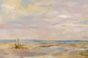 Dreamy Beach by Silvia Vassileva