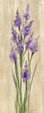 Farm Flower II by Silvia Vassileva