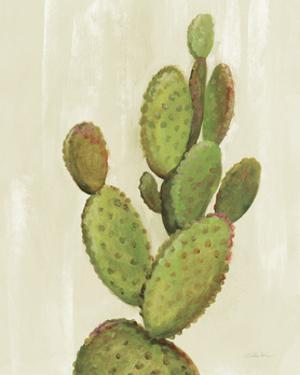 Front Yard Cactus I by Silvia Vassileva