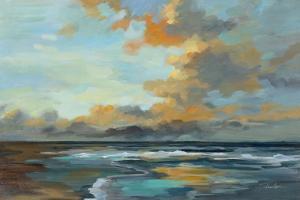 Oceanside Sunset by Silvia Vassileva
