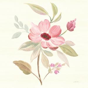 Petals and Blossoms VI by Silvia Vassileva