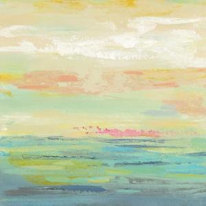 Pink Clouds II by Silvia Vassileva