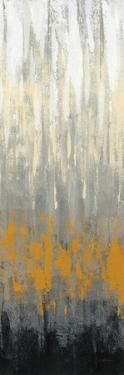 Rain on the Asphalt II by Silvia Vassileva