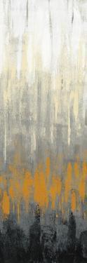 Rain on the Asphalt III by Silvia Vassileva