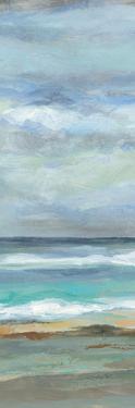 Seashore III by Silvia Vassileva