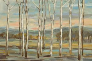 Silver Forest by Silvia Vassileva