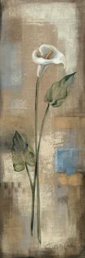 Spring Grace III by Silvia Vassileva