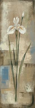 Spring Grace IV by Silvia Vassileva