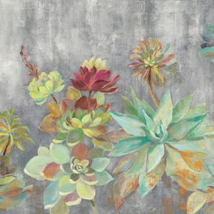 Succulent Garden Gray Crop by Silvia Vassileva