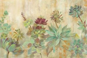 Succulent Garden by Silvia Vassileva