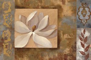Sunset Flower I by Silvia Vassileva