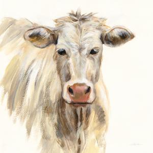 White Cow by Silvia Vassileva