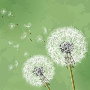 Vintage Floral Background With Dandelion by silvionka