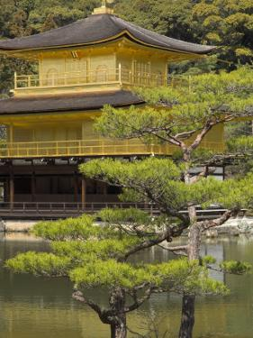Golden Pavilion, Rokuon Ji Temple, Kinkaku Ji, Kyoto, Kansai, Honshu, Japan by Simanor Eitan