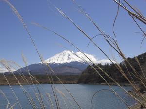 Lake Shoji, with Mount Fuji Behind, Shojiko, Central Honshu, Japan by Simanor Eitan