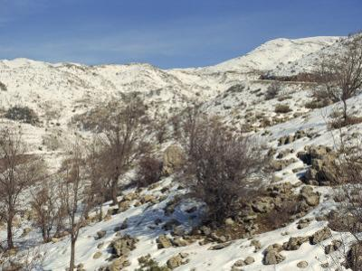 Snow Covered Landscape on Mount Hermon, Israel, Middle East