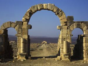 Tangier Gate, Volubilis, UNESCO World Heritage Site, Morocco, North Africa, Africa by Simanor Eitan
