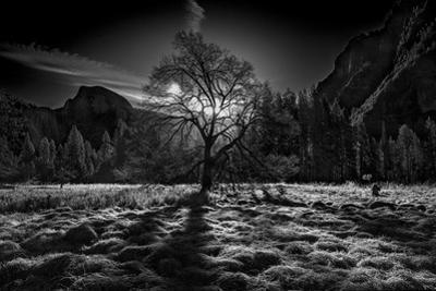 The Winter Spirit by Simon ChengLu
