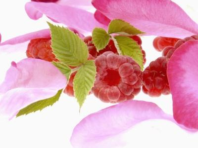 Raspberries with Leaves and Flower Petals by Simon Krzic