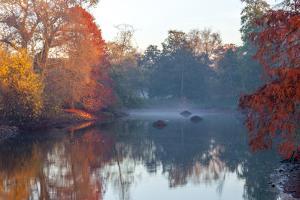 Autumn in Kew Gardens, UNESCO World Heritage Site, Kew, Greater London, England, UK by Simon Montgomery