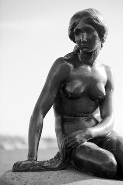 Black-And-White Picture of the Statue of the Little Mermaid in Copenhagen, Denmark, Scandinavia by Simon Montgomery