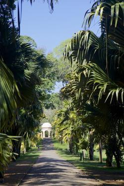 Royal Botanical Gardens, Peradeniya, Kandy, Sri Lanka, Asia by Simon Montgomery