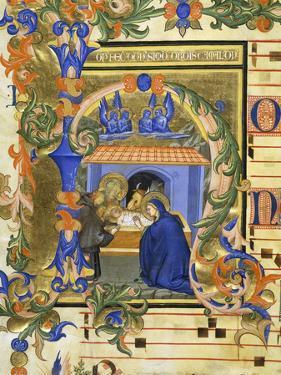 The Birth of Christ by Simone da Siena