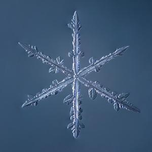 Simple Star Snowflake