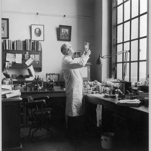 Sir Alexander Fleming - Scottish Bacteriologist at Work in His Laboratory