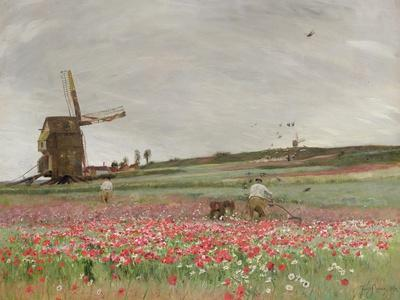 Poppy Field, 1886