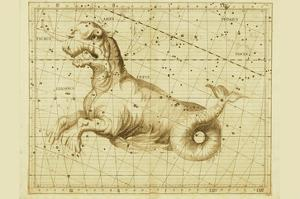 Taurus by Sir John Flamsteed
