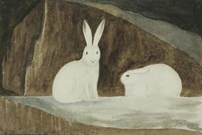 Arctic Hares, C.1829-33