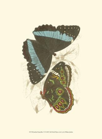 Butterflies VI
