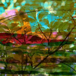 Abstract Leaf Study III by Sisa Jasper