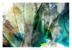 Agave Abstract II by Sisa Jasper