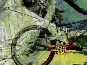 Mountain Bike by Sisa Jasper