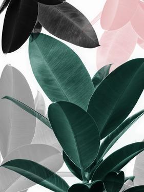Blush Leaf by Sisi and Seb