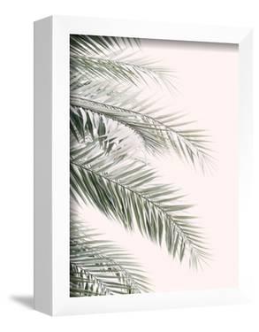 Blush Palm Leaf by Sisi and Seb