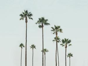 California by Sisi and Seb
