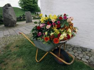 A Large Arrangement of Flowers in a Wheel Barrow by Sisse Brimberg