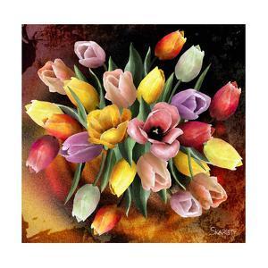 Colors by Skarlett