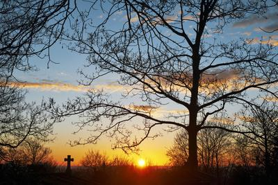 Sunset with Trees, Silhouette, Cross, Paris, France