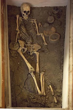 https://imgc.allpostersimages.com/img/posters/skeleton-and-funerary-objects-found-in-a-burial-site_u-L-PRBOH90.jpg?artPerspective=n