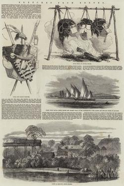 Sketches from Borneo