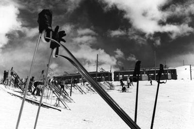 Ski Poles. Gloves. Skis