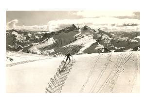 Skier Doing Herring-Bone Uphill