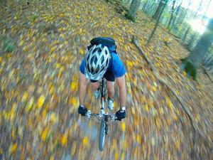A Mountain Biker Flies Through the Woods on a Single Track Trail by Skip Brown
