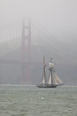 A Two Masted Schooner Sails under the Golden Gate Bridge by Skip Brown