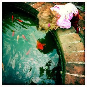 A Two Year Old Girl Hangs over the Edge of a Goldfish Pond by Skip Brown