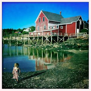 A Two Year Old Girl Walks the Low Tide Shoreline at Orr's Island by Skip Brown